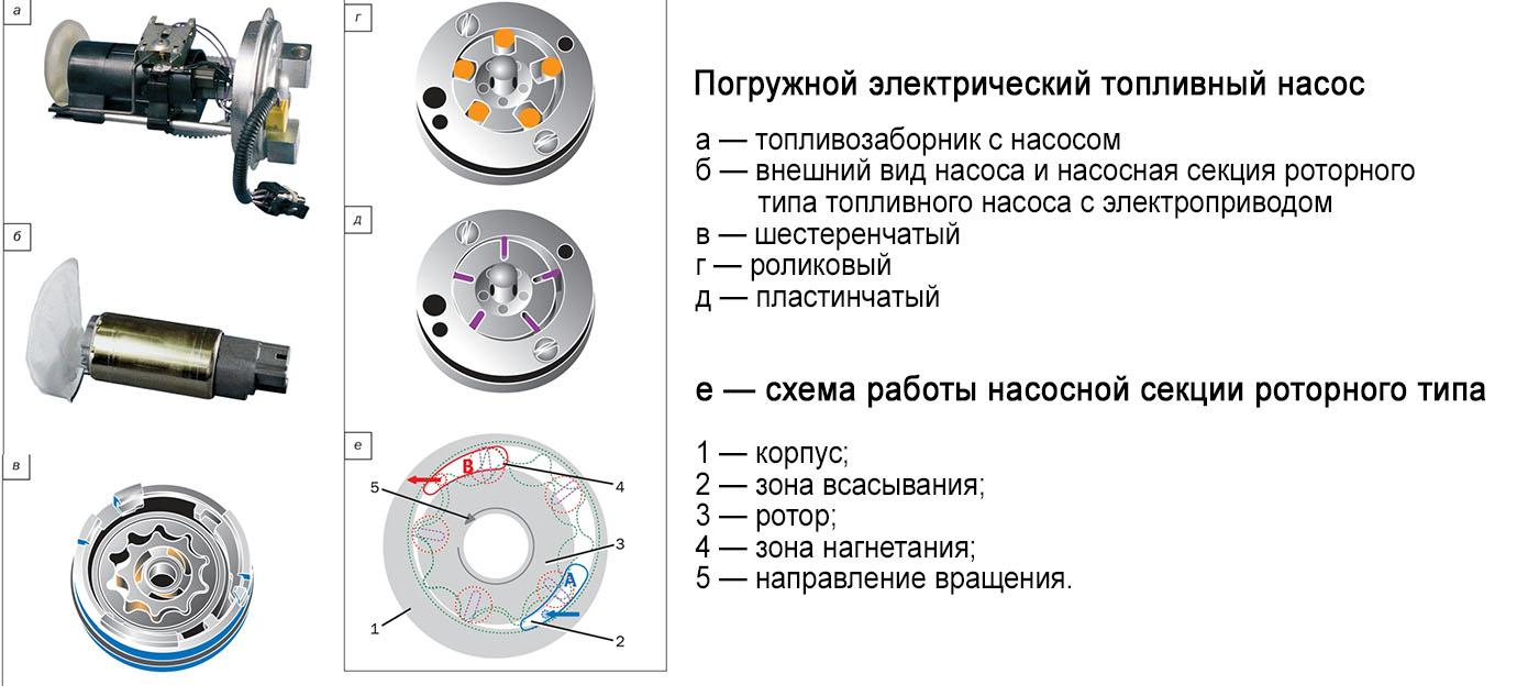 виды насосов роторного типа