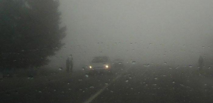 туман и дождь на дороге